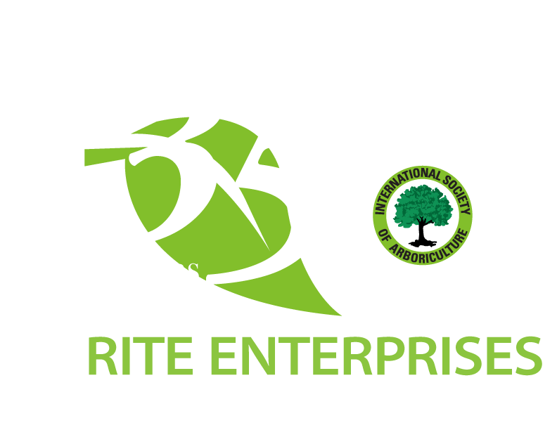 Rite Enterprises Logo